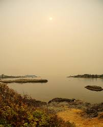 Bc Wildfire Global News by Victoria Daily Photo 2017