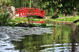 imagenes de jardines japones armando jardines asesoria mantenimiento diseño y montaje de