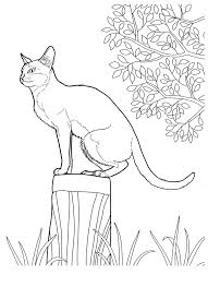 1220 printable coloring pages images coloring