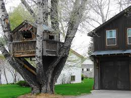 zillow digs best treehouse designs zillow