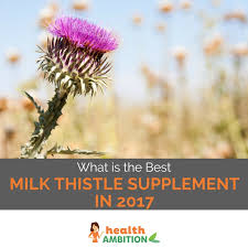 which brand is the best what is the best milk thistle supplement brand in 2017 unbiased