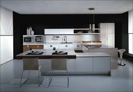 kitchen amazing top paint colors for kitchen cabinets painted