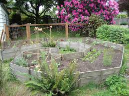 creative vegetable gardening creative vegetable gardens 28 images planting a vegetable