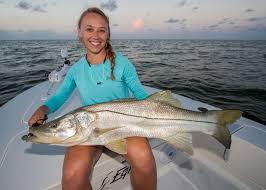 snook fishing sanibel island area fishing charter charters