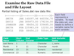 Sas 70 Report Exle by Chapter 5 Creating Sas Data Sets From Files And Excel Work