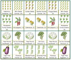 Planning A Square Foot Garden With Vegetables Garden Plot Planner 16 Free Garden Plans Garden Design Ideas 17