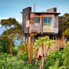 Tree House Home Hapuku Lodge Tree Houses Accommodations