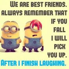 Funny Minion Memes - the best minion memes ever