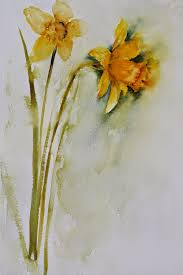 art by judith farnworth a lonely yellow daffodil