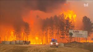 Definition For Wildfire by Portugal Wildfire 61 Killed Victims Burned In Cars As They Fled