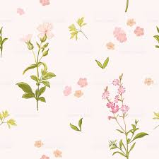 flower background seamless floral shabby chic pattern stock vector