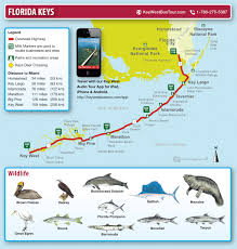 Florida Map Of Beaches by Key West And Florida Keys Maps Miami Beach 411 Travel Store
