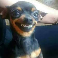 Super Happy Face Meme - super happy face meme generator