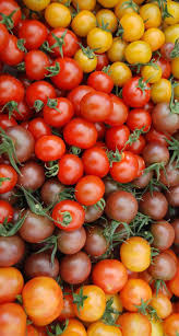 best 25 natural grocers ideas on pinterest chicken potato soup
