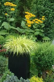 Outdoor Planter Ideas by 646 Best Container Garden Images On Pinterest Container Garden