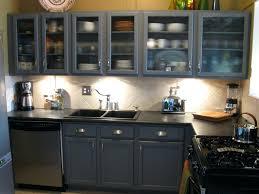 Kitchen Display Ideas Image Of Kitchen Glass Cabinet Doorsglass Doors Home Depot Display