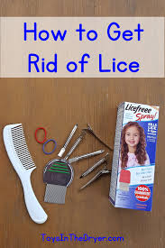 http toysinthedryer com how to get rid of lice
