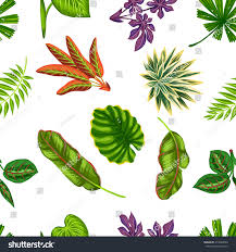 easy plants seamless pattern tropical plants leaves background stock vector