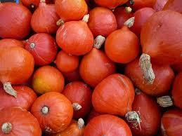 comment cuisiner les potimarrons le potimarron comment cuisiner ce légume de saison