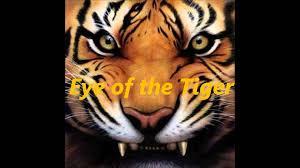 eye of the tiger original hd