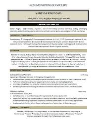 Professional Resumes Writers Hire Professional Resume Writers