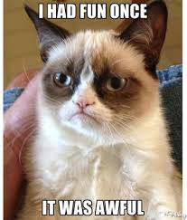 grumpy cat valentines grumpy cat predictably hated valentines day the frisky