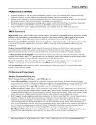 Virtual Assistant Resume Samples by Summary On A Resume Examples Executive Assistant Resume Example