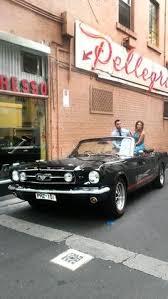 Mustang In Black Mustangs In Black 1966 Gt Convertible Ford Mustang In Williamstown