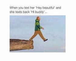 Hey Buddy Meme - when you text her hey beatiful and she texts back hi buddy
