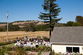Country Backyard Wedding Sonoma Budget Wedding Ideas For Planning Affordable Vineyard Weddings