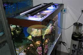 aquarium lights for sale 0 9m 36 cree led aquarium light for coral reef 12000k 460nm