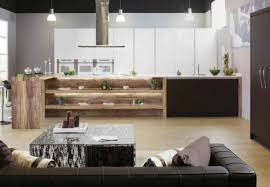Rustic Modern Kitchen Cabinets by Kitchen White And Black Modern Contemporary Kitchen Design With