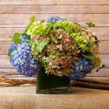hydrangea arrangements classic hydrangea arrangement in new york ny flowers by philip