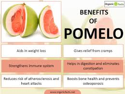 7 impressive benefits of pomelos organic facts