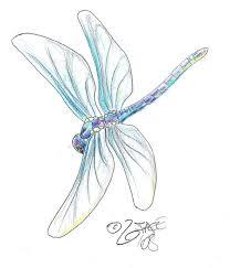 best 10 site de dessin ideas on pinterest oiseau en vol motifs