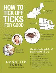 how to tick off ticks for good mosquito squad chicago pest
