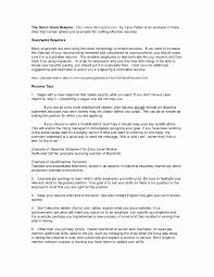summaries for resumes resume skill summary examples krida info