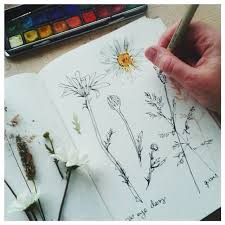 25 beautiful flower sketches ideas on pinterest flower drawings
