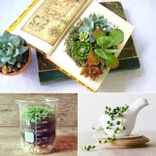 Small Desk Plants Office Desk Plants And Planters From Etsy Office Desk