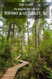 lexus vancouver island 26 best recreation in tofino images on pinterest british