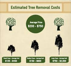 things about tree services johns creek tree service