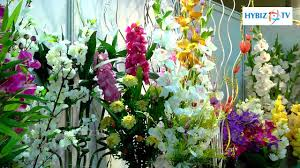Artificial Plants Home Decor Artificial Plants For Home Decor Hybiz Youtube