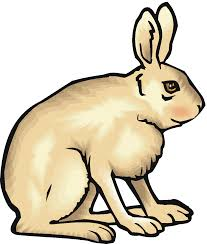 rabbit bunny clipart black and white free clipart images 3 clipartix