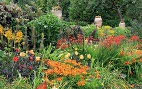 reasons to grow native plants in your garden grower direct fresh