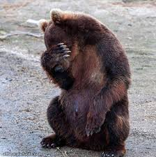 i has a sad bear pictures