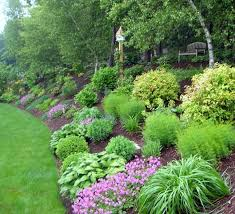 Steep Hill Backyard Ideas 15 Before And After Backyard Makeovers Landscaping Ideas Change