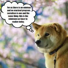 Doge Meme Tumblr - marxistmaru tumblr com gramunion tumblr explorer