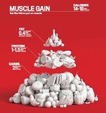 the men u0027s fitness food pyramid
