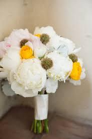 plant sale u2013 alta peak 87 best garden romance images on pinterest romance bride groom