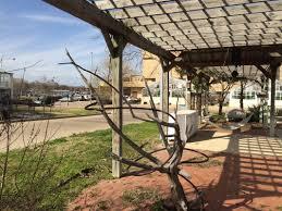 blog archives the howdy farm at texas a u0026m university